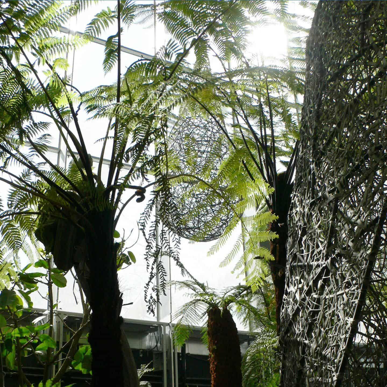Cocons des jardins de la tour Carpe Diem - DVVD